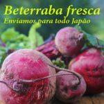 beterraba-fresca-facebook01